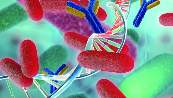 Abordaje multidisciplinar de la Microbiología Clínica