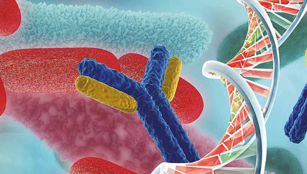 Segundas jornadas de Microbiología y Virología Molecular