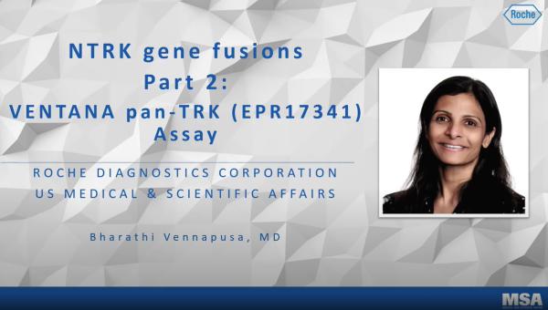 Ensayo Pan-TRK IHC con VENTANA pan-TRK (EPR17341)