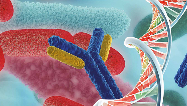 Abordajes Moleculares en la solución de las resistencias hospitalarias